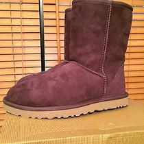 Ugg Australia Woman's Classic Suede Short Port Size 7. New in Box Photo