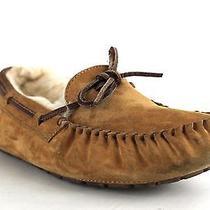 Ugg Australia Women's Dakota Slippers in Chestnut Size 8 (S403) Photo