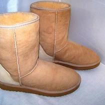 Ugg Australia Womens 5825 Classic Short Chestnut Suede Sheepskin Boots Size W 10 Photo