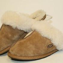 Ugg Australia Womens 6 37 Scuffs Suede Slip on Slides Flats Slippers Shoes Photo