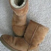 Ugg Chestnut Classic Women's Boots Size 8 Photo