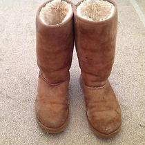 Ugg Chestnut Size 7 Photo