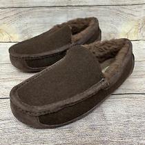 Ugg Chocolate Brown Ascot Slipper 3233 Men's Size 7 New Photo