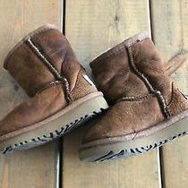 Ugg Classic Baby Toddler Girl Boy Chestnut Suede Boot Size 6 Wool Cozy  Photo