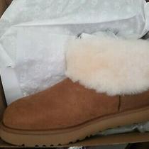 Ugg Classic Mini Fluff Chestnut Suede Sheepskin Women's Boots Size Us 12 New Photo