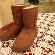 Ugg Classic Short Boots New in Box Photo
