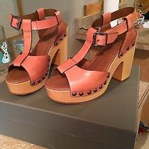 Ugg Collection Sandal Size 8 Photo