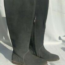 Ugg Delay Tall Boots Size 6.5 Never Worn They Have Some Flaws From Storage. Photo