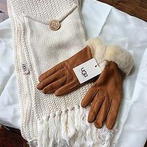 Ugg Genuine Leather Sheepskin Gloves & 100% Cashmere Ugg Scarf Photo