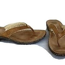 Ugg Hamoa Brown Leather Thong Shearling Lining 1791 Flip Flops Sandals Size 8 Photo