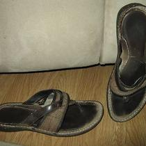 Ugg Layback Sandals 7 Photo
