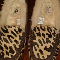 Ugg Leopard Slippers Womens 8 Photo
