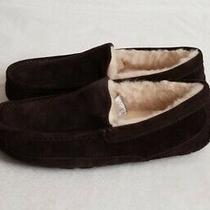 Ugg Men's Ascot Slippers Size 8 Espresso 1101110 Nwob Photo