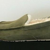 Ugg Men's Ascot Slippers Wool Hard Bottom Moccasin Shoes Moss Green Size 12 Photo