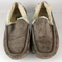 Ugg Men's Slippers Size 10 Ascot 5775 Great Looking and in Great Condition Photo