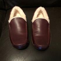 Ugg Mens Ascot Slipper Size 10 Cordovan Color Photo