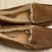 Ugg Mens Ascot Slipper Size 9  Photo