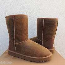 Ugg Mens Classic Short Chestnut Bomber Jacket Boots Us 13/ Eur 47/ Uk 12  New Photo
