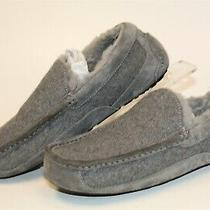 Ugg Mens Size 8 40.5 Ascot Wool Shearling Loafer Slippers Shoes 3233 Photo