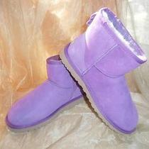 Ugg Mini Short Classic Boots Electric Violet Purple Women's Us Sz 7 New W/box Photo