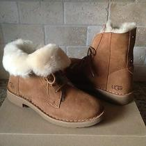 Ugg Quincy Chestnut Suede Sheepskin Lace Up Ankle Boots Shoes Us 10.5 Womens  Photo