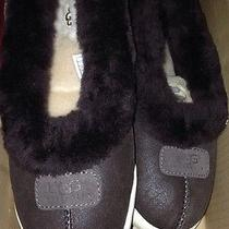 Ugg Rylan Chocolate Bomber Jacket Sheepskin Slippers Us 9 New Photo