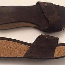 Ugg Sandals 1768 Basil Brown Suede Cork Wedge Heel Slip on Us11/eur 42 Photo