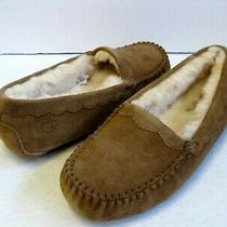 Ugg Scallop Moc Women Slipper Suede Chestnut Us 6 /uk 4 /eu 37 /jp 23 Photo