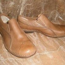 Ugg Shoes Chesters New in Box Size 11  Photo