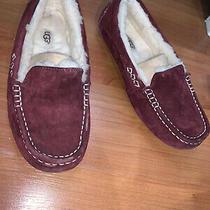 Ugg Slippers 7 Used Photo
