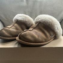 Ugg Slippers Scuffette Ll Chestnut Size 7 With Box Photo