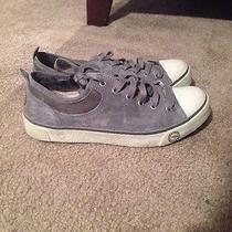 Ugg Sneakers Photo