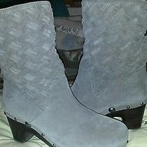 Ugg Suede Boots Photo