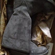 Ugg Tall 6 Grey Boots New With Box Photo