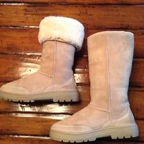 Ugg Tall Boots9gently Worn100% Authentic Super Comfortable Photo