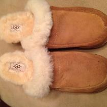 Ugg Winter Clogs Size 8 Photo
