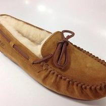 Ugg Women Dakota Slipper Chestnut Size 8 Photo