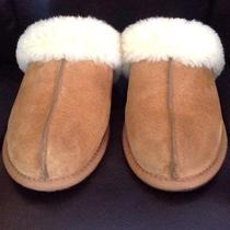 Ugg Women's Scuffette Slipper - Chestnut - Size 8 Photo