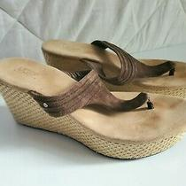 Ugg Women's Size 9 Zamora Wedge Sandal Heel Brown Suede 3093 Leather Beach  Photo
