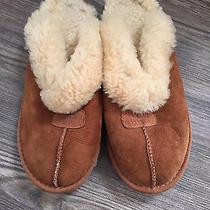 Ugg Women's Slippers  Photo