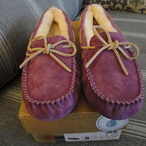 Ugg Womens Slippers Size 8 Purple New in Box Style Dakota Photo