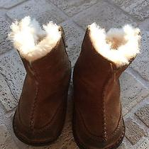 Uggs Baby Infant Lace Up Small Boots Photo