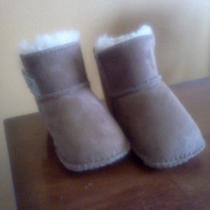 Uggs Infant Small (6-12 Months) Chestnut Photo