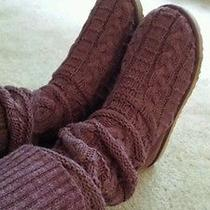 Uggs Purple Photo