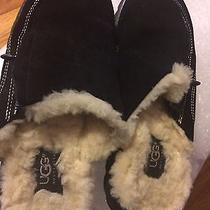 Uggs Slippers Size 7 Photo