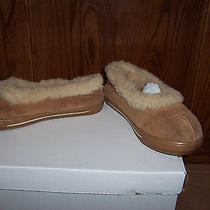 Uggs Women's House Slippers Usa Size 8 Photo