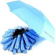 Umbrella's for Peace by Matt Lamb - Lot of 50 Light Blue Umbrella's Photo