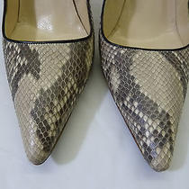Valentino Designer Snakeskin  Mother of Pearl High Heels Pumps Shoes Eu 36 Us 6 Photo