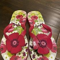 Vera Bradley Flip Flops  Makes Me Blush Size 5/6 Photo