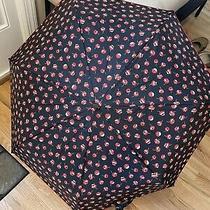 Vera Bradley Umbrella-Red Flowers With Black Background Photo